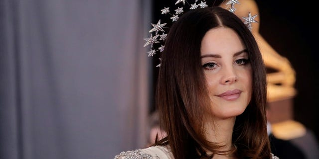 Lana Del Rey performed at Orlando's Amway Arena Friday night just after Hunt was arrested about a block away.