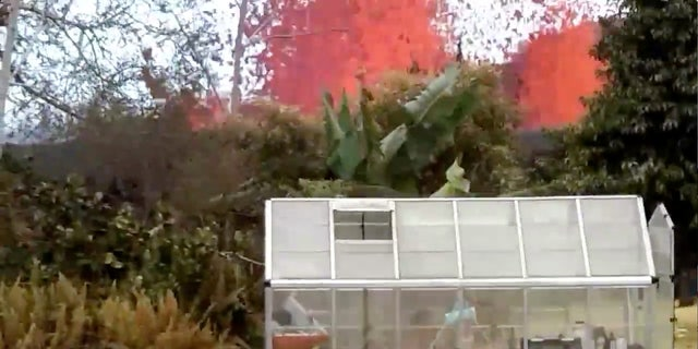 Lava is seen from a fissure appearing behind a resident's backyard in Puna, Hawaii.