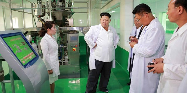 North Korean leader Kim Jong Un provides field guidance to the newly built Pyongyang Corn Processing Factory.