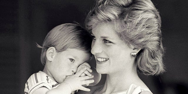 FILE PHOTO - Britain's Princess Diana holds Prince Harry during a morning picture session at Marivent Palace, where the Prince and Princess of Wales are holidaying as guests of King Juan Carlos and Queen Sofia, in Mallorca, Spain August 9, 1988.    REUTERS/Hugh Peralta/File Photo - LR1ED150UUTKB