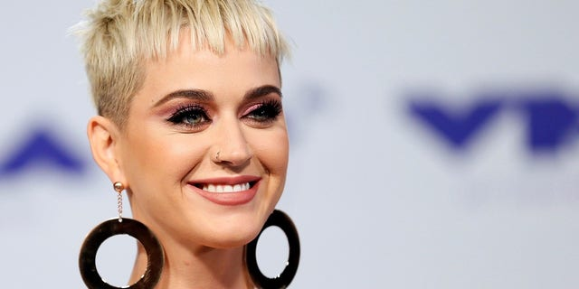 Katy Perry was an outspoken Hillary Clinton advocate during the 2016 presidential campaign.