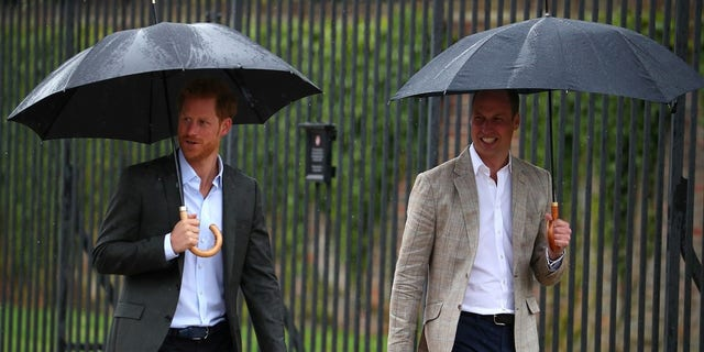 """Prince William said the family is """"very excited"""" about Prince Harry and Meghan Markle's engagement."""