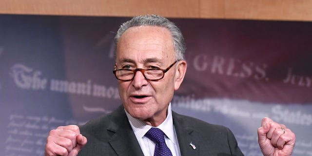 Senate Minority Leader Chuck Schumer, D-N.Y., calls for ethics probe of Sen. Al Franken amid allegations.