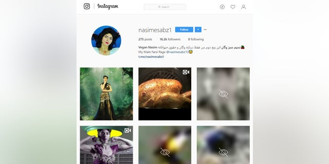 Nasim Aghdam, 39, ran several social media pages that included vegan cooking tutorials and animal cruelty videos. (Instagram)