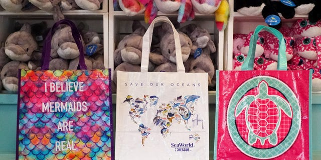 Non-recyclable and non-reusable plastic items are also being phased out at SeaWorld Parks & Entertainment's other parks, including Aquatica parks, Sesame Place, Busch Gardens, Discovery Cove and Water Country USA.