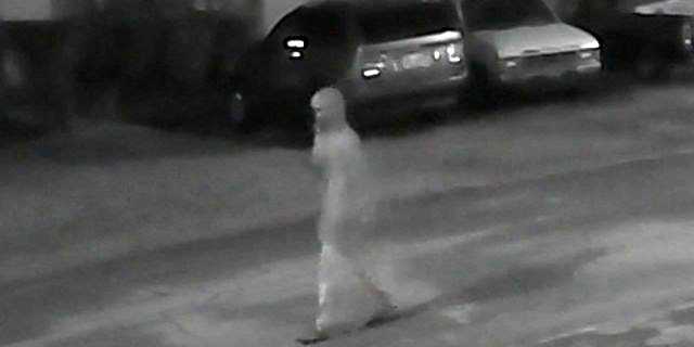Investigators are asking the public for help identifying this person seen on the night of Mitchell's killing.