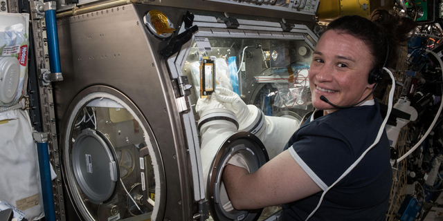 Expedition 56 Flight Engineer Serena Auñón-Chancellor is seen here performing operations for the Angiex Cancer Therapy trials on board the International Space Station.