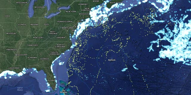 The shark map (Oceana)