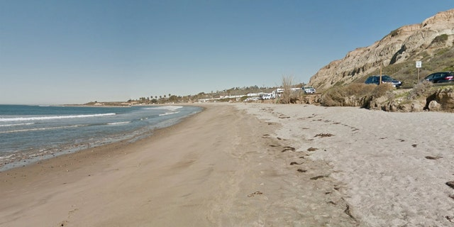 A shark attacked a woman swimming near San Onofre State Beach in California on Saturday.