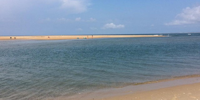 """A portion of """"Shelly Island"""" in North Carolina is seen in July."""
