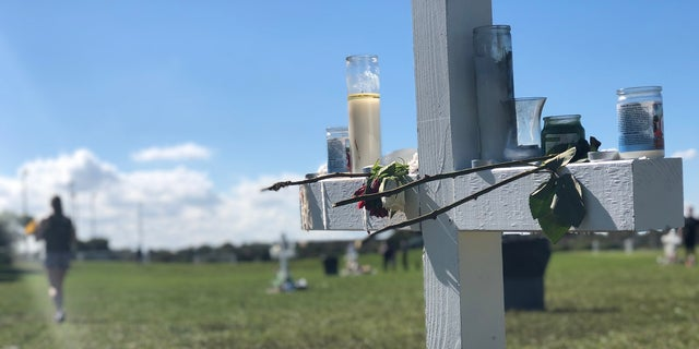 Two staff members and 15 students were killed in a shooting at Marjory Stoneman Douglas High School.