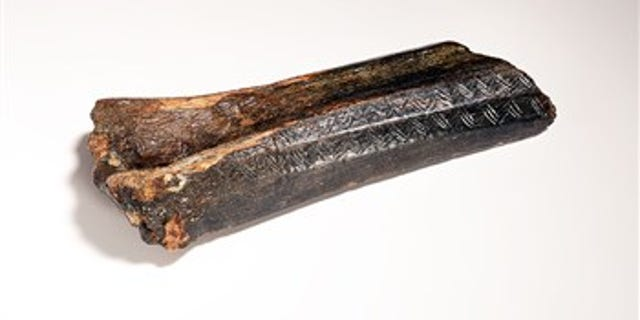 The decorated bison bone recovered from the North Sea (Dutch National Museum of Antiquities)