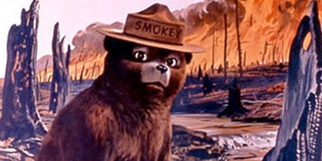 Smokey the Bear taken from a U.S. Agriculture Dept. poster.