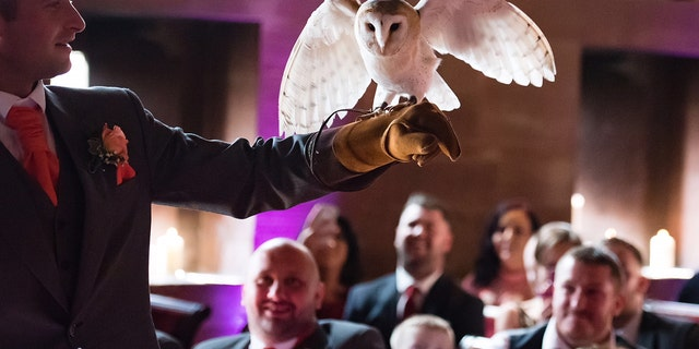 The barn owl — which had been commissioned specifically to fly down the aisle and deliver the rings to the best man — completed the first part of that task flawlessly.