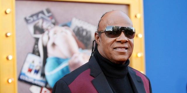 Stevie Wonder has won 25 Grammys.