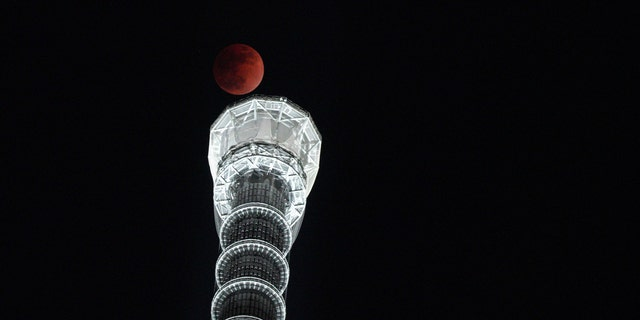 Lunar eclipse is seen over Tokyo Skytree in Tokyo Wednesday, Jan. 31, 2018. (AP Photo/Eugene Hoshiko)