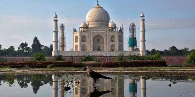 A cleanup effort is ongoing at the Taj Mahal ahead of President Trump's visit there next week.