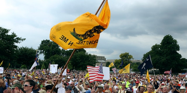 """FILE -- The crowd cheers speaker Glenn Beck (not in picture) during a Tea Party rally to """"Audit the IRS"""" in front of the U.S. Capitol in Washington June 19, 2013."""