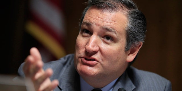 """Sen. Ted Cruz, R-Texas, says the decision to add a question on citizenship to the 2020 census is """"reasonable."""""""