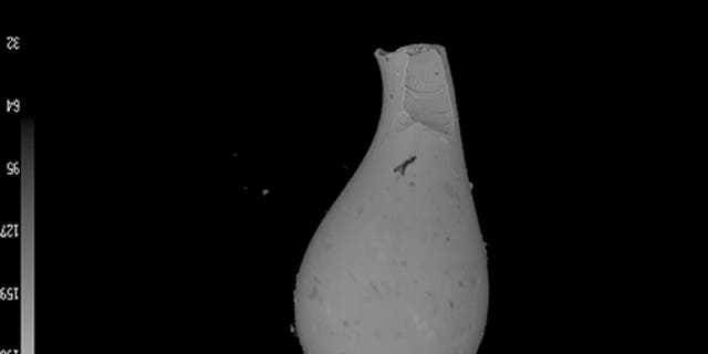 The scientists found hundreds of tiny sand-grain-size tektites like this one, thought to be created when vaporized material from an impact solidified while flying through the air. (Megan Fung)