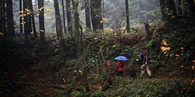 """FILE - In this Nov. 2013 photo, a couple walks the Bridge of the Gods Trailhead on the Pacific Crest Trail in Cascade Locks, Ore. The movie """"Wild,"""" which is based on the book by author, Cheryl Strayed, and which received Oscar nominations for best actress and best supporting actress, has also increased interest in the trail. (AP Photo/Statesman-Journal, Thomas Patterson, File)"""
