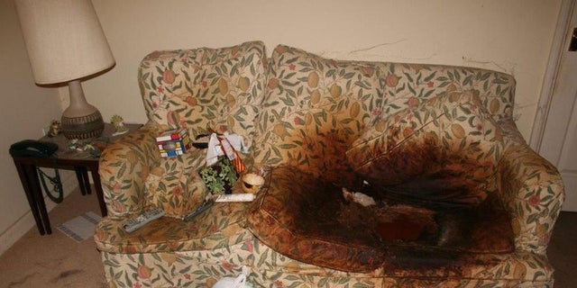 A picture of the couch Cecily Kurtz was found dead on July 2, 2014.