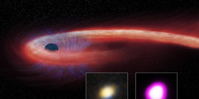 A giant black hole ripped apart a star and then gorged on its remains for about a decade, according to astronomers. (X-ray: NASA/CXC/UNH/D.Lin et al, Optical: CFHT, Illustration: NASA/CXC/M.Weiss)