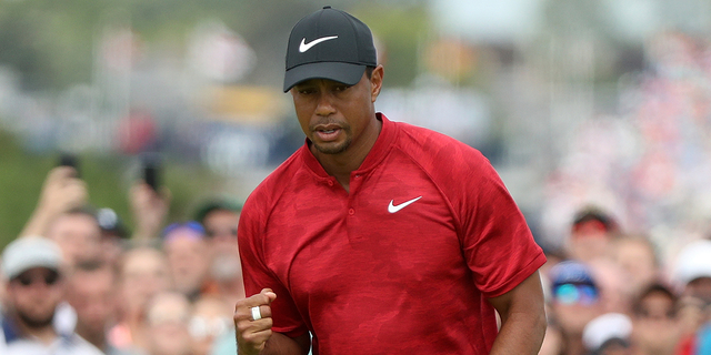 Tiger Woods fell short during the final round for the 147th British Open Golf championships in Carnoustie, Scotland.