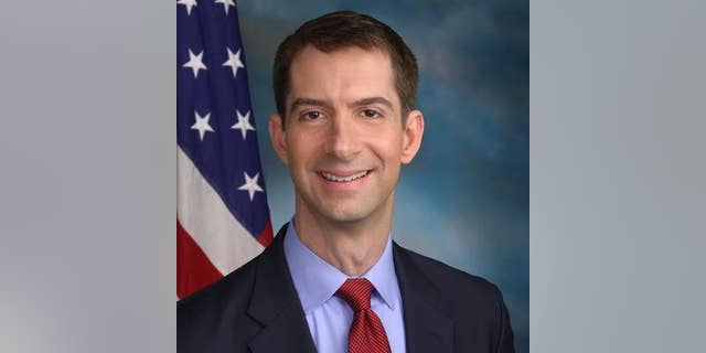 Arkansas Sen. Tom Cotton, who was previously considered for defense secretary or CIA director, is also on the White House radar to replace Mattis.