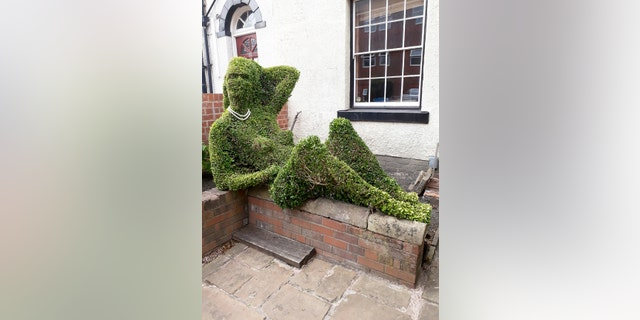 Topiary Artist Sick Of Drunkards Having Pretend-Sex With -1947