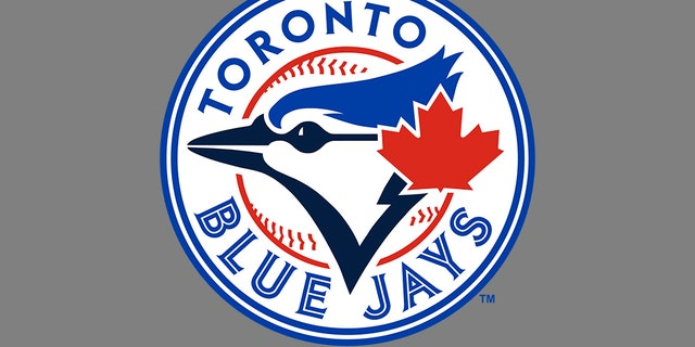 Not being a sports fan, Fiske didn't realize her neck tattoo looked a lot like the Blue Jays logo.