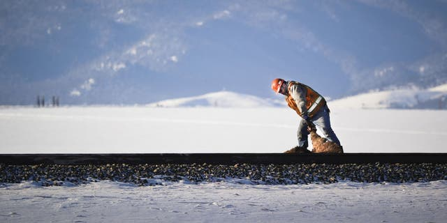 A Montana Rail Link employee heaves a maimed elk carcass off the tracks in Montana.