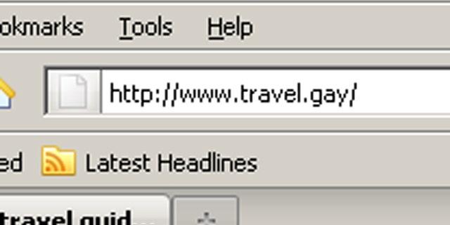 The controversial .gay domain