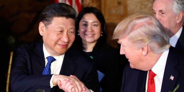 Chinese President Xi Jingping and U.S. President Donald Trump shake hands.