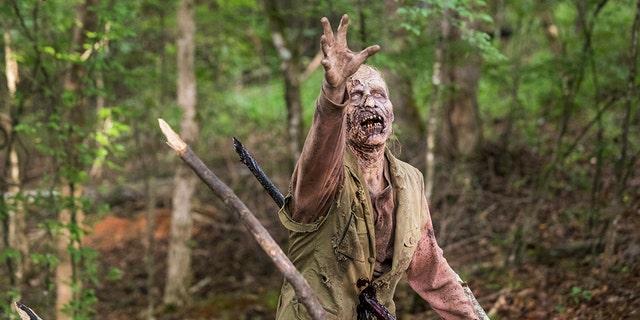 - The Walking Dead _ Season 8, Episode 6 - Photo Credit: Jackson Lee Davis/AMC