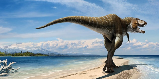 An artistic take on Lythronax, a T. rex relative that lived about 80 million years ago.