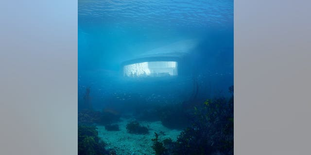 A panoramic window will give diners an up-close view of the ocean life on the seabed.
