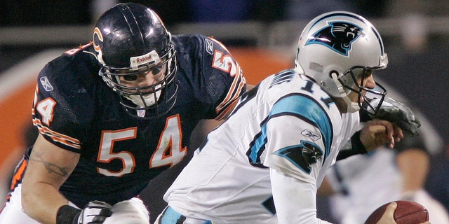 FILE -  In this Jan. 15, 2006, file photo, Chicago Bears' linebacker Brian Urlacher (54) attempts to sack Carolina Panthers' quarterback Jake Delhomme (17) in the third quarter of their NFC divisional playoff football game in Chicago.
