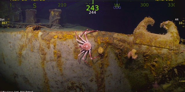 wwii wreck uss helena discovered by microsoft co