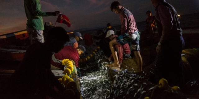 """In this Oct. 31, 2016 photo, the Marval family fish at night in the sea, off Punta de Araya, Sucre state, Venezuela. Sucre was the epicenter of food riots that swept through the country in June, and Punta de Araya families got through the summer by eating """"dog soup,"""" a broth made from seawater and the small fish that are usually thrown back."""