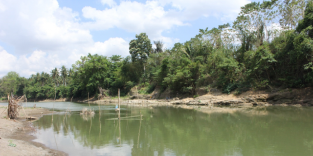 The Walanae River at Paroto, about a mile (2 km) east of Talepu.