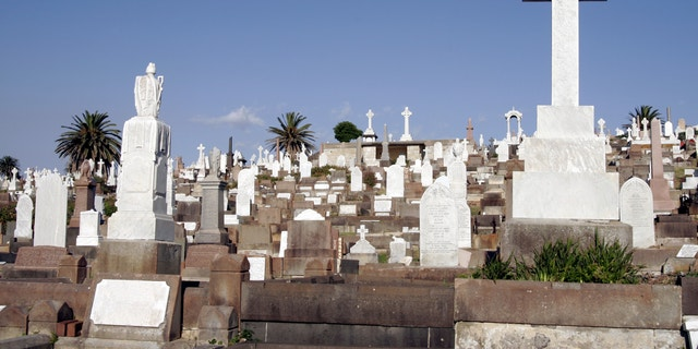 Old Large Cemetery With Many Graves and Gravestones During Daylight In Sydney Australia