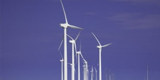 Cattle graze beneath turbines at a wind farm in Texas.