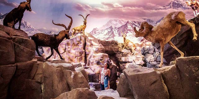 Two visitors marvel at a National Park exhibit.