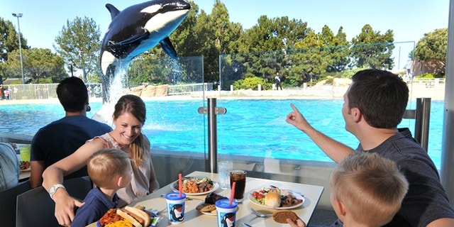 Room rates at a SeaWorld hotel could be twice as much compared to a similar hotel located outside of the park.
