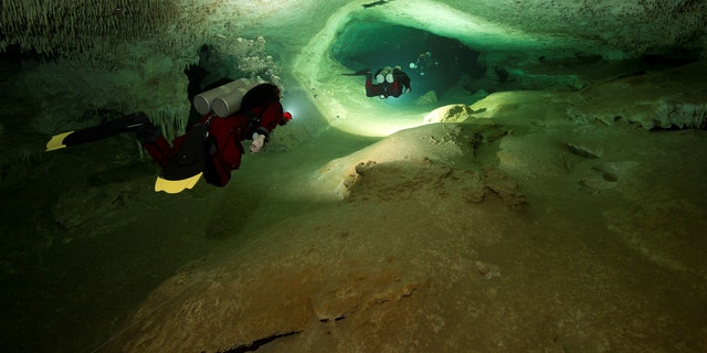 Scuba divers tour an authorized area of Sac Aktun underwater cave system as part of the Gran Acuifero Maya Project near Tulum, in Quintana Roo state, Mexico January 24, 2014. (Herbert Mayrl/Courtesy Gran Acuifero Maya Project [GAM]/Handout via REUTERS)