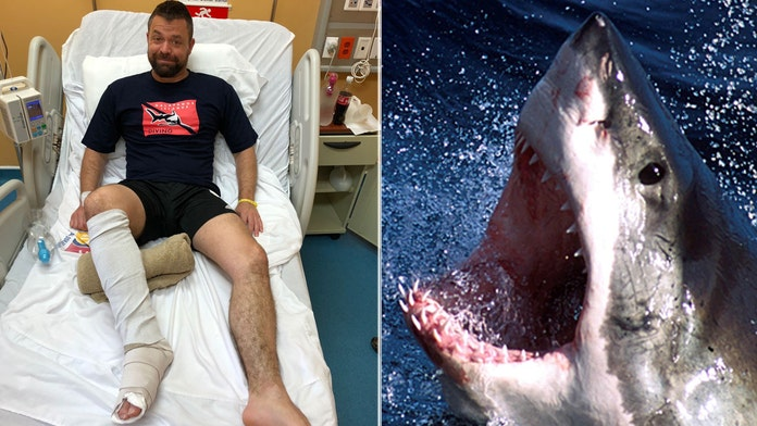 WARNING, GRAPHIC CONTENT: Man punches shark that was mauling his foot, exposing bones and tendons