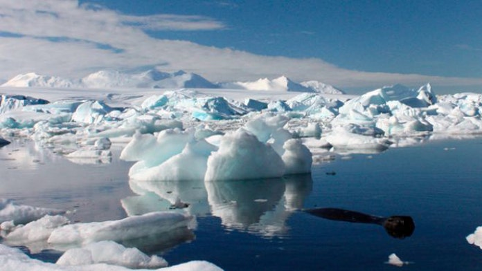Scientists explore Antarctic lake 'twice the size of Manhattan' buried under 3,500 feet of ice