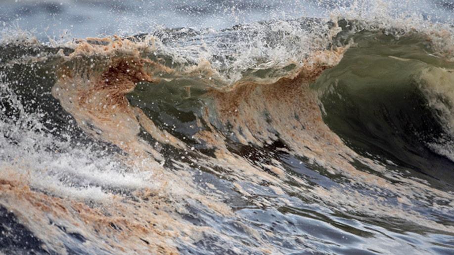 ee18d92e-Gulf Oil Spill