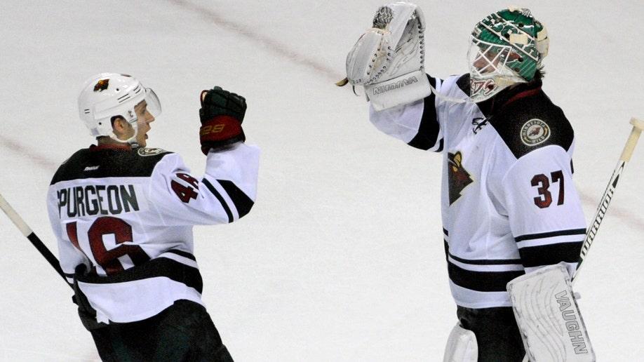 Wild Sabres Hockey